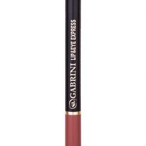 Express Pencil 1 #105